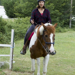 centre equestre ecole FFE aix en provence 81