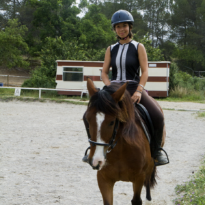 centre equestre ecole FFE aix en provence2