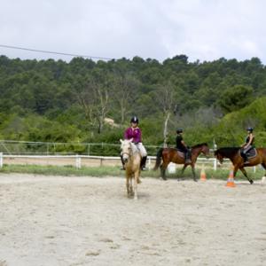 centre equestre ecole FFE aix en provence7