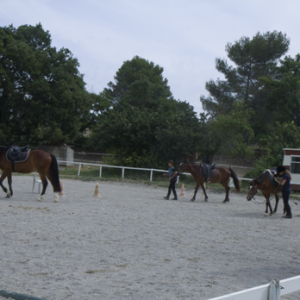 centre equestre ecole FFE aix en provence85