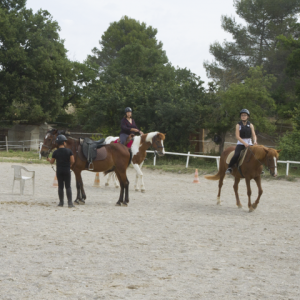 centre equestre ecole FFE aix en provence87