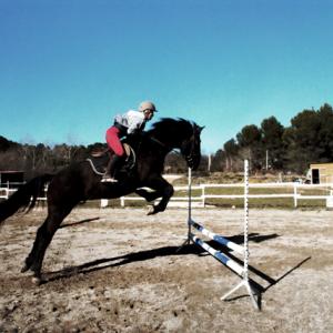 centre equestre ecole FFE aix en provence925